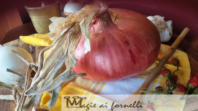 La cipolla ramata di 1 kg e 200 prodotta dall'Azienda Nicola Palladino