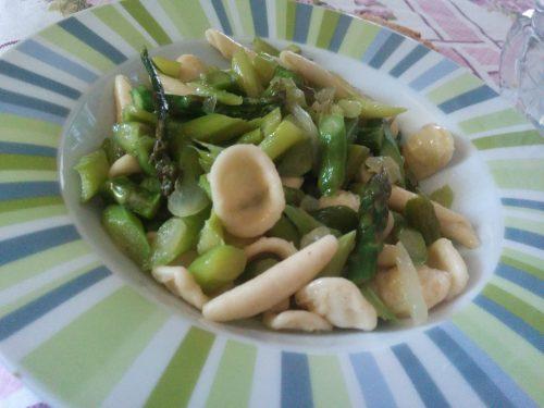 Orecchiette asparagi e taleggio